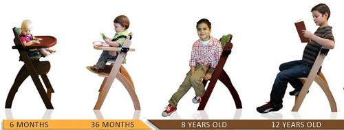 Abiie Beyond Wooden High Chair - life