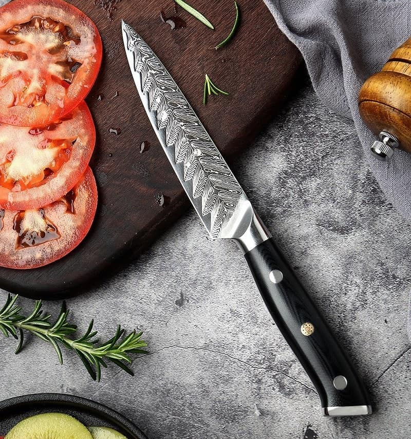 Best Damascus Chef Knife letcase