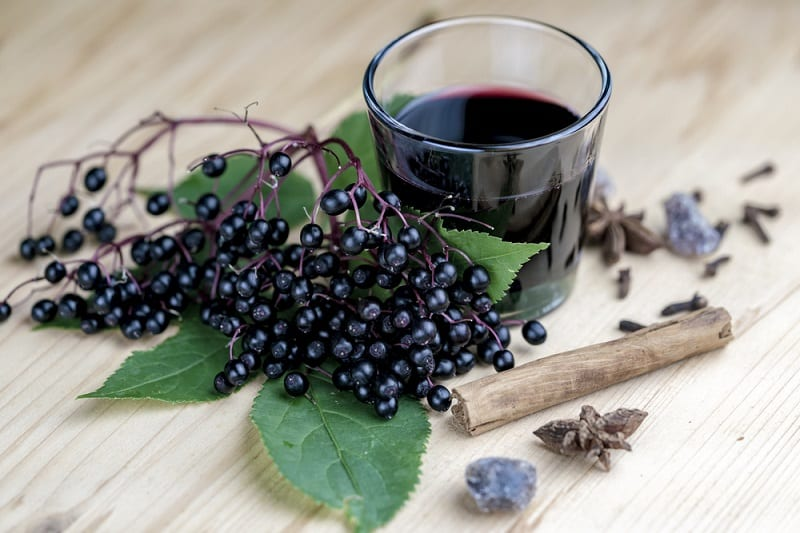 Foods That Start With E, the lot dallas, Elderberries