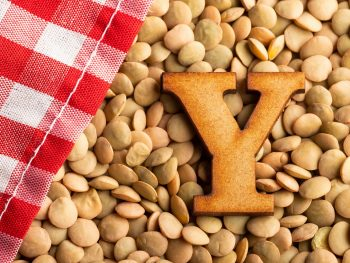 Foods That Start With Y, the lot dallas