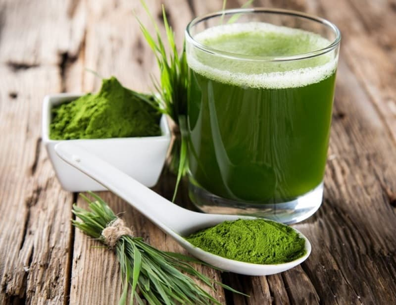 food that starts with w, the lot dallas, Wheatgrass